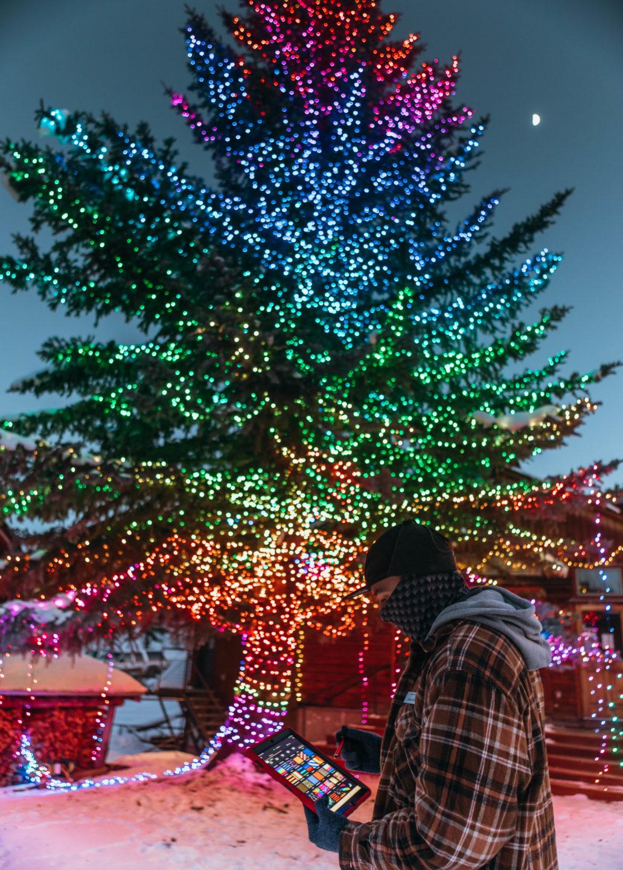 Christmas tree lights instillation